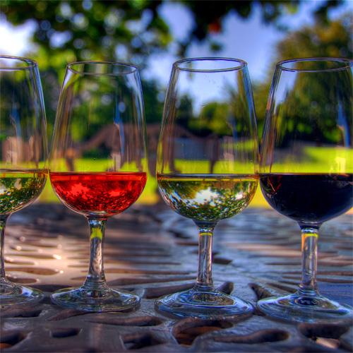 Salute! The North Carolina Wine Celebration