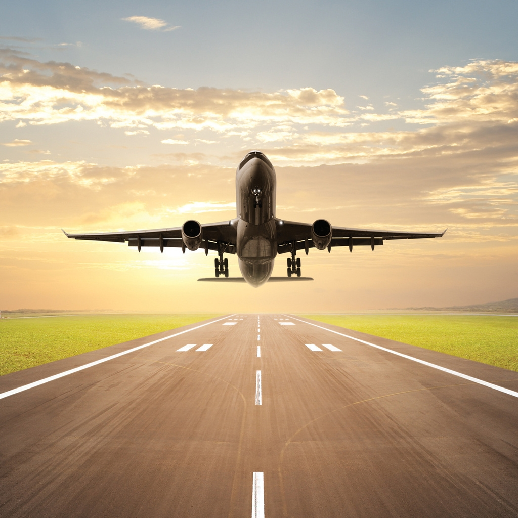 Taking Flight Across Generations