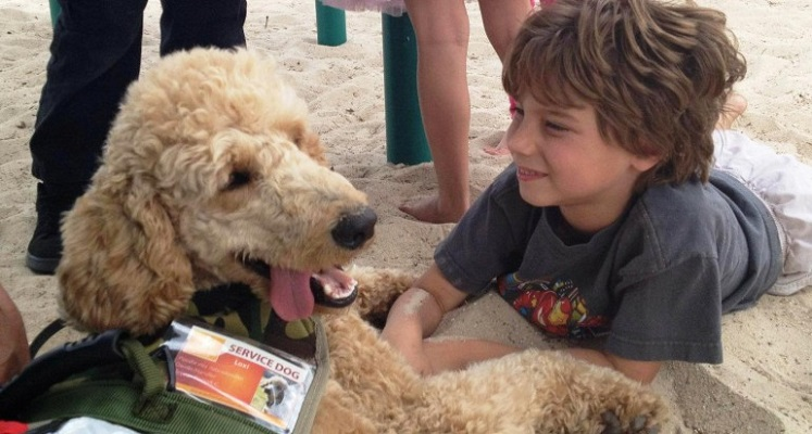 Assistance Dogs for Autism at Kaleideum Downtown