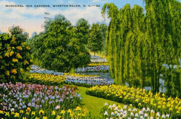 Gardening in a Golden Age Landscape Conference