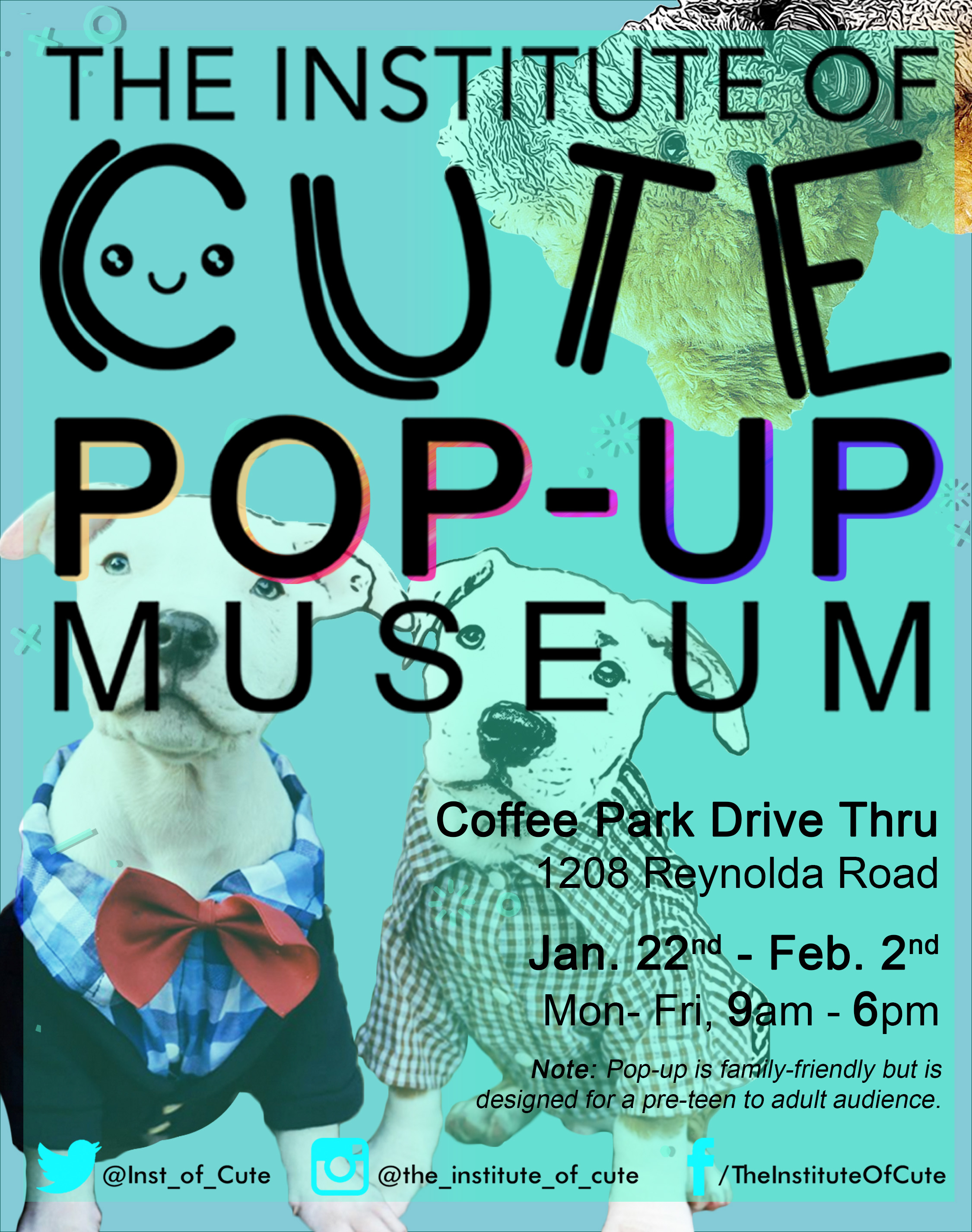 The Institute of Cute Pop-Up Museum