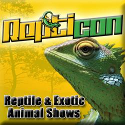 ReptiDay Winston-Salem Reptile & Exotic Animal Expo