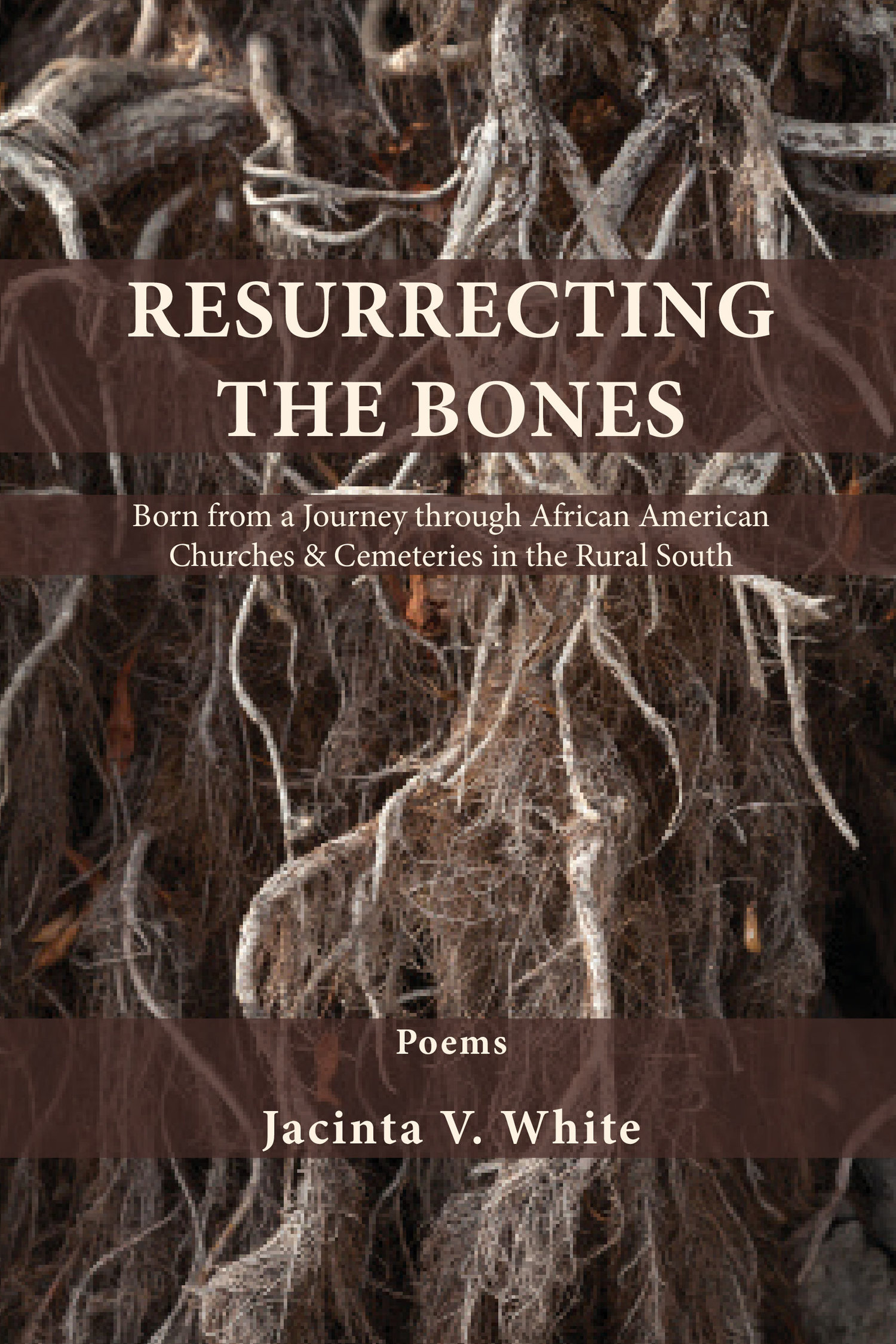 Jacinda White Poetry Launch
