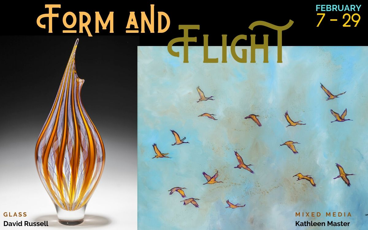 Form and Flight